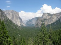 Highlight for Album: YOSEMITE NATIONAL PARK 2006